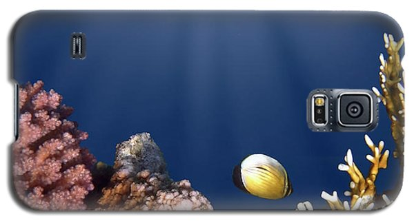 And Then There Was Light Galaxy S5 Case