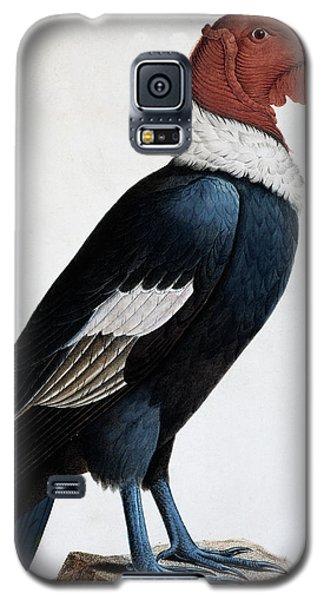 Andean Condor Galaxy S5 Case