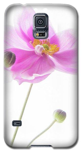 Anemone Babies  Galaxy S5 Case
