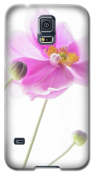 Anemone Babies  Galaxy S5 Case