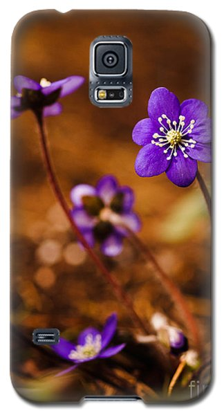 Anemone Hepatica Galaxy S5 Case