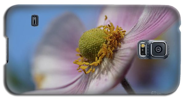 Anemone Tomentosa Close Up Galaxy S5 Case