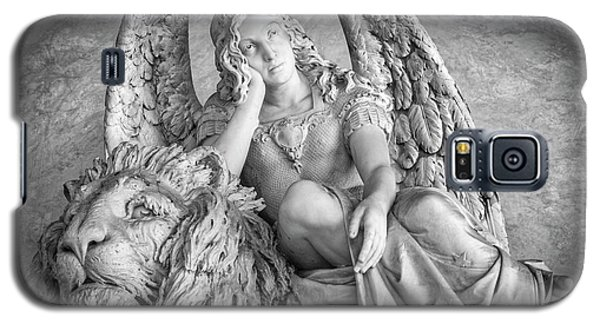 Galaxy S5 Case featuring the photograph Angel And Lion by Sonny Marcyan