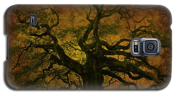 Angel Oak 3 Charleston Galaxy S5 Case