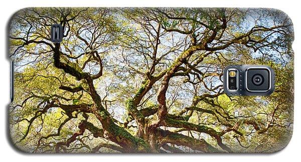 Angel Oak In Spring Galaxy S5 Case