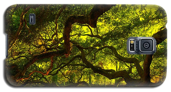 Angel Oak Limbs 2 Galaxy S5 Case