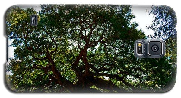 Angel Oak Tree 2004 Galaxy S5 Case