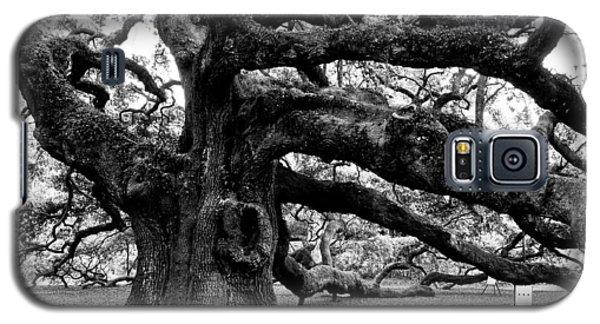 Angel Oak Tree 2009 Black And White Galaxy S5 Case