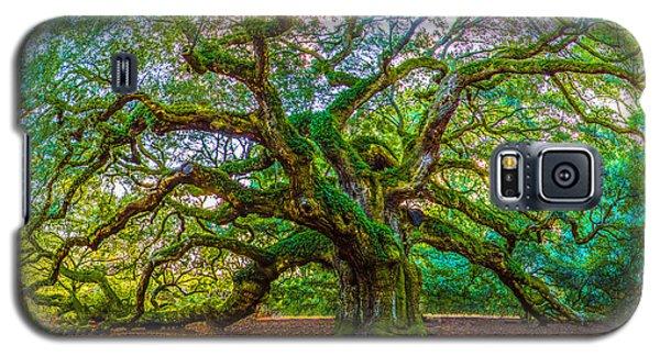 Angel Oak Tree Charleston Sc Galaxy S5 Case