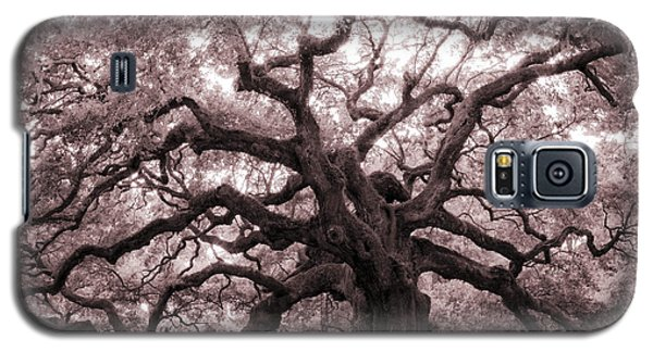 Angel Oak Tree Galaxy S5 Case
