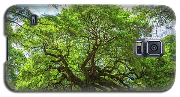 Angel Oak Tree In South Carolina  Galaxy S5 Case