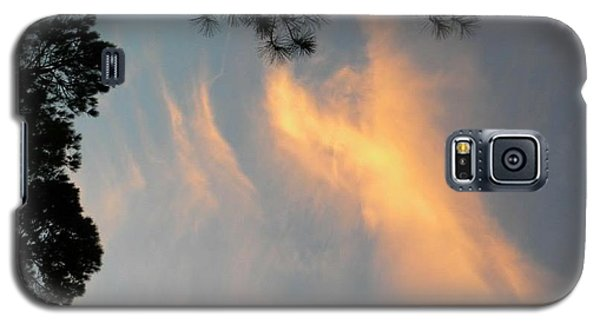 Angels Over The Front Yard Galaxy S5 Case