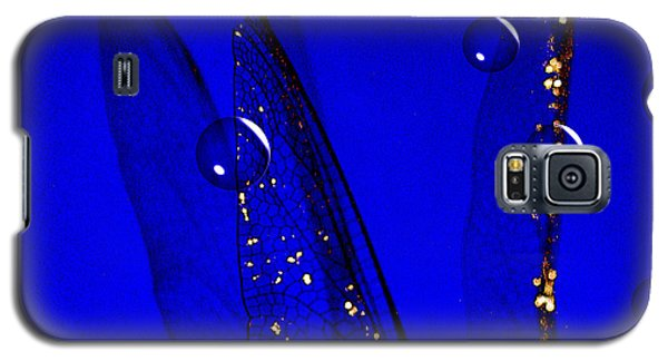 Angels Wings Blue Galaxy S5 Case