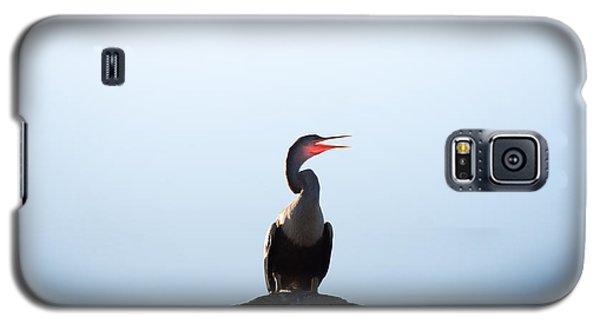 Anhinga Galaxy S5 Case