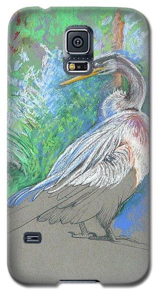 Anhinga Sarasota Plein Air Galaxy S5 Case