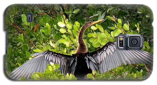 Galaxy S5 Case featuring the photograph Anhinga With Silver Wings by Rosalie Scanlon