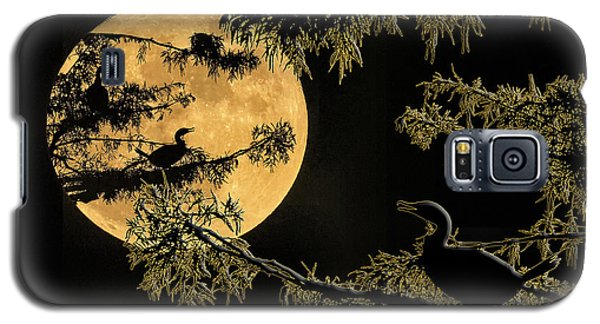 Galaxy S5 Case featuring the photograph Anhingas In Full Moon by Bonnie Barry