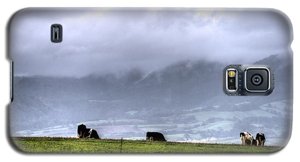 Animals Livestock-03 Galaxy S5 Case