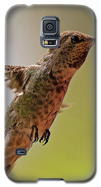 Galaxy S5 Case featuring the photograph Anna's Hummingbird H24 by Mark Myhaver