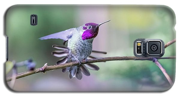 Galaxy S5 Case featuring the photograph Anna's Hummingbird Stretching by Kathy King