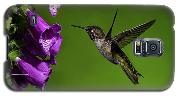Galaxy S5 Case featuring the photograph Anna's Hummingbird With Fox Glove Flowers by Lara Ellis