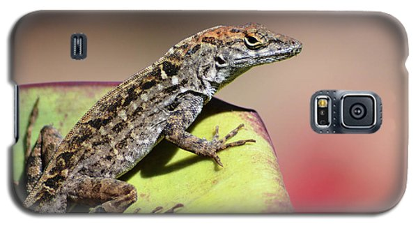 Anole In Rose Galaxy S5 Case