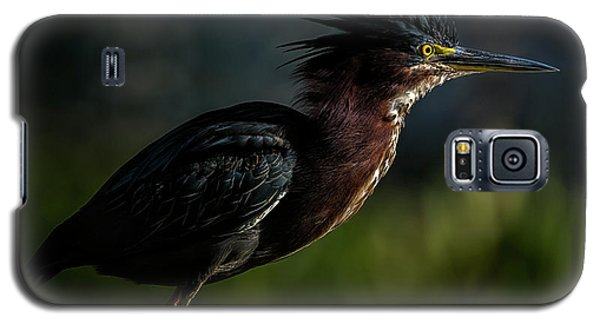 Another Bad Hair Day Galaxy S5 Case