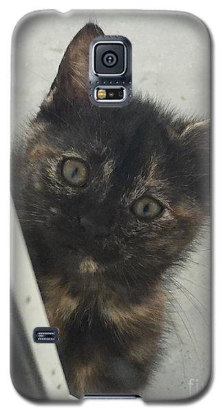 Answer The Door Galaxy S5 Case