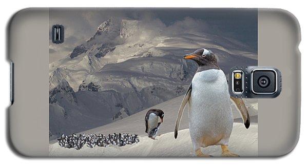 Antarctic Magesty Galaxy S5 Case