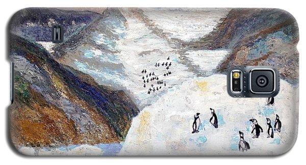 Antarctica1 Galaxy S5 Case