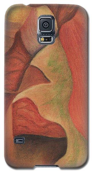 Antelope Canyon 2 Galaxy S5 Case