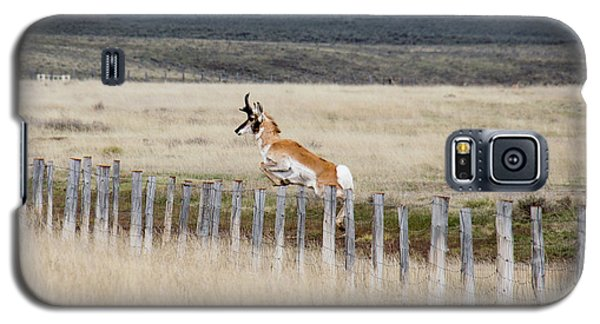 Galaxy S5 Case featuring the photograph Antelope Jumping Fence 1 by Rebecca Margraf