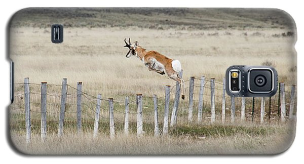 Galaxy S5 Case featuring the photograph Antelope Jumping Fence 2 by Rebecca Margraf