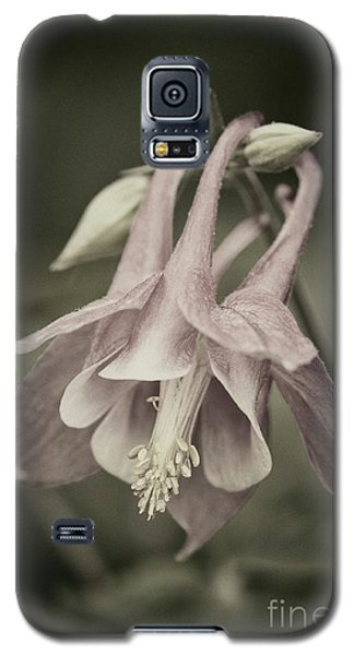 Galaxy S5 Case featuring the photograph Antique Columbine - D010096 by Daniel Dempster