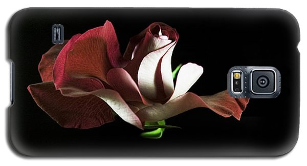Galaxy S5 Case featuring the photograph Antique Rose by Elsa Marie Santoro