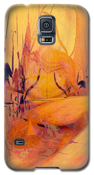 Antsy Series - Life's A Stage Galaxy S5 Case