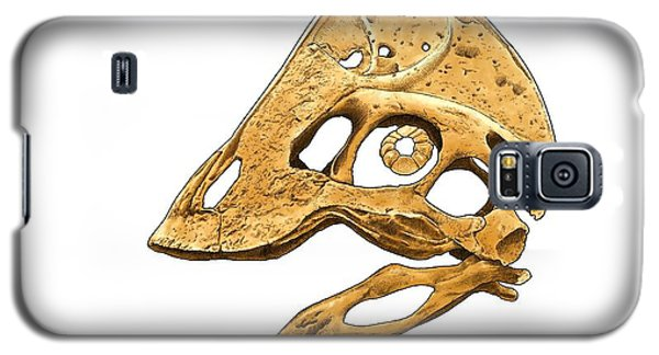 Anzu Wyliei Skull Galaxy S5 Case