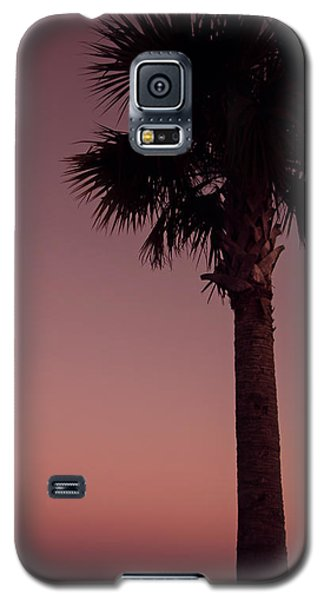 Apalachicola Palm Galaxy S5 Case