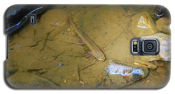 Appalachian  Native Galaxy S5 Case