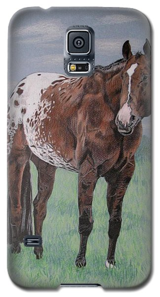 Galaxy S5 Case featuring the drawing Appaloosa by Melita Safran
