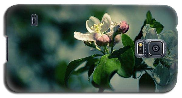 Apple Blossom Galaxy S5 Case