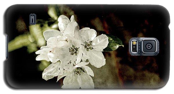 Apple Blossom Paper Galaxy S5 Case