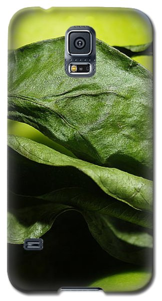 Galaxy S5 Case featuring the photograph Apple Leaves by Michael Canning