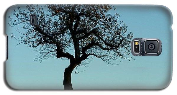 Apple Tree In November Galaxy S5 Case by Ernst Dittmar