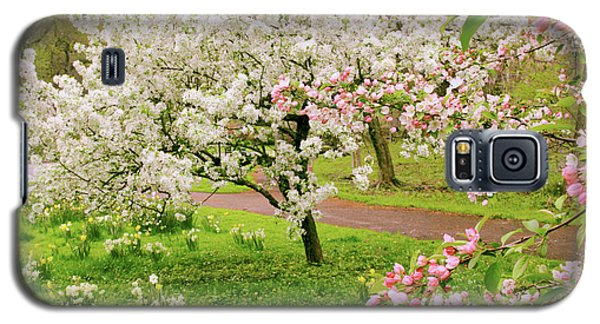 Apple Trees In Bloom Galaxy S5 Case by Jessica Jenney