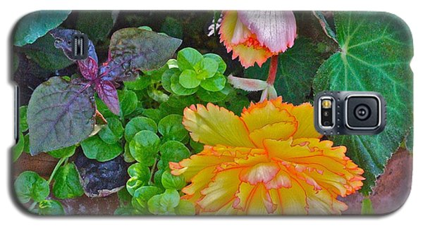 Apricot Begonia 3 Galaxy S5 Case