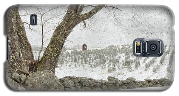 April Christmas Tree Farm Galaxy S5 Case