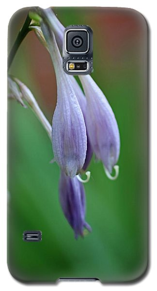Galaxy S5 Case featuring the photograph April Ends by Michiale Schneider