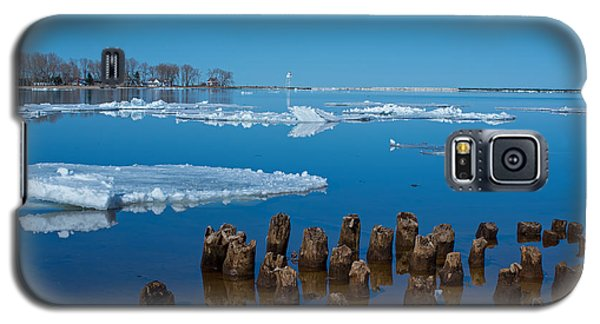 April Ice Galaxy S5 Case