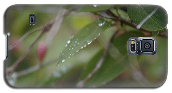 April Showers 1 Galaxy S5 Case